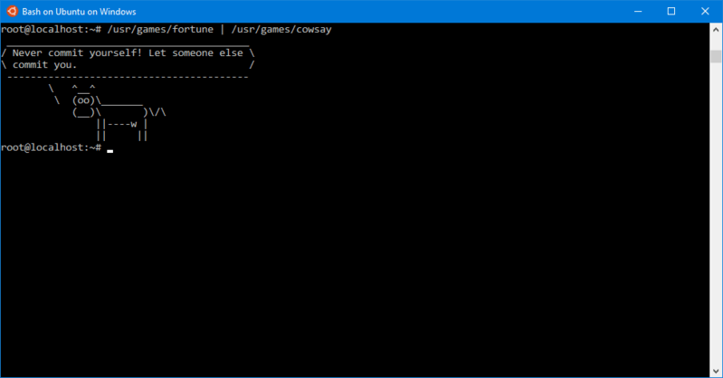 Windows Subsystem for Linux